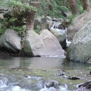 Le nostre vasche naturali